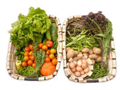 Alimentos Eco