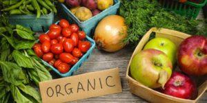 Alimentos ecológicos